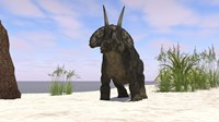 Triceratops on a Beach