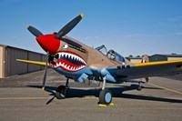Curtiss P-40E Warhawk Fine Art Print