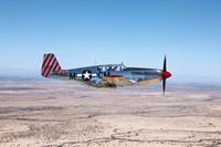 TP-51C Mustang Fine Art Print