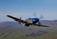 A P-51D Mustang 2 by Scott Germain - various sizes