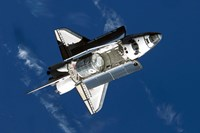 The Space Shuttle Discovery - various sizes - $29.99
