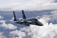 F-15C Aggressor - various sizes