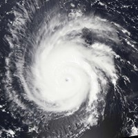 Hurricane Frances - various sizes - $46.99