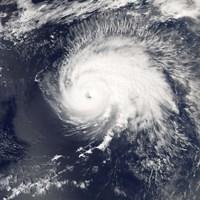 Hurricane Gordon - various sizes - $46.99