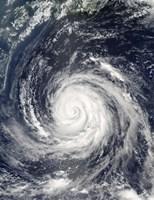 Typhoon Rusa - various sizes