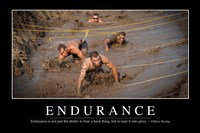 Endurance: Inspirational Quote and Motivational Poster - various sizes