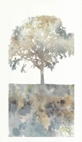 Water Tree I Fine Art Print