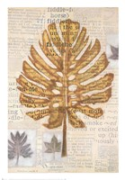 Harvest IV Fine Art Print