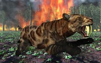 Saber Toothed Tiger Running from Fire by Mark Stevenson - various sizes