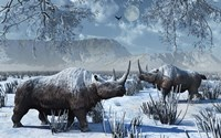 Woolly Rhinoceros in Winter Fine Art Print