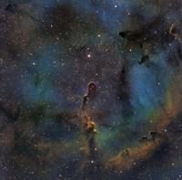 IC 1396, the Elephant Trunk Nebula Fine Art Print