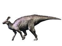 Tsintaosaurus Dinosaur Fine Art Print