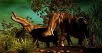 Platybelodon by Philip Brownlow - various sizes