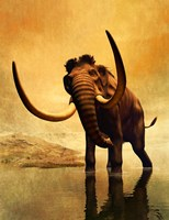 Wooly Mammoth and Sunset Fine Art Print
