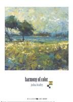Harmony of Color I Framed Print