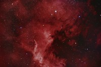 NGC 7000, The North America Nebula Fine Art Print