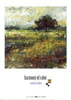 Harmony of Color II Framed Print