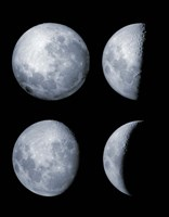 Four Phases of the Moon Fine Art Print