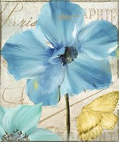 Blue Mountain Poppy Fine Art Print