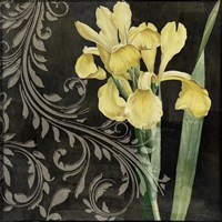 Ode to Yellow II by Color Bakery - various sizes, FulcrumGallery.com brand