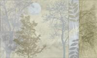 Tree Language I Framed Print