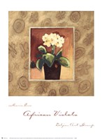 "African Violets by Maria Eva - 19"" x 26"""