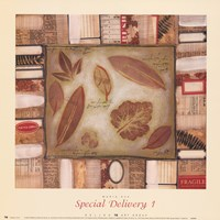 Special Delivery 1 Fine Art Print