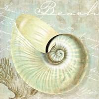 Turquoise Beach IV Fine Art Print