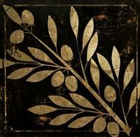 Bellissima I Fine Art Print