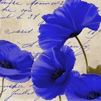 Coquelicots Bleues I Framed Print