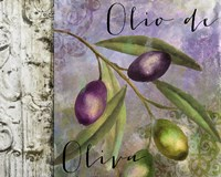 Olivia III by Color Bakery - various sizes