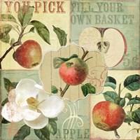 Apple Blossoms II Fine Art Print