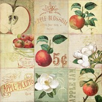Apple Blossoms IV by Color Bakery - various sizes
