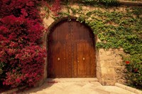 Doorway at Consolat de Mar, Palma de Mallorca, Balearics, Spain Fine Art Print