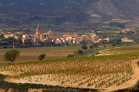 Village of Brinas surrounded by Vineyards, La Rioja Region, Spain by Janis Miglavs - various sizes, FulcrumGallery.com brand
