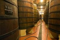 Large Oak tanks holding wine, Bodega Muga Winery, Haro village, La Rioja, Spain Fine Art Print