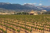 Small church next to the Wine Culture Museum, Briones village, La Rioja, Spain Fine Art Print