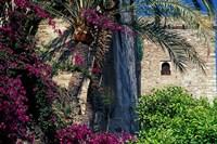 Plams, Flowers and Ramparts of Alcazaba, Malaga, Spain by John & Lisa Merrill - various sizes