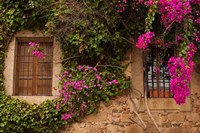 Flower-covered Buildings, Old Town, Ciudad Monumental, Caceres, Spain by Walter Bibikow - various sizes