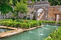 The Generalife gardens, Alhambra grounds, Granada, Spain Fine Art Print