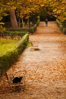 Parque del Buen Retiro, Madrid, Spain by Walter Bibikow - various sizes - $45.99