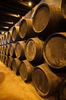 Spain Bodegas Gonzalez Byass Winery Casks