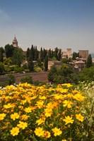 Spain, Granada The Generalife gardens, Alhambra grounds Fine Art Print