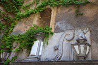 Spain, Granada Ivy growing on the walls of the Alhambra by Julie Eggers - various sizes