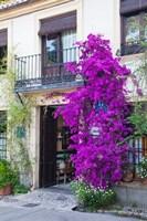 Spain, Granada The entrance of Hotel America Fine Art Print