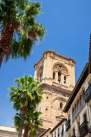 Spain, Granada This is the bell tower of the Granada Cathedral by Julie Eggers - various sizes