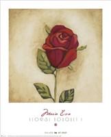 "Floral Bouquet I by Maria Eva - 26"" x 32"""