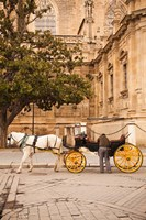 Spain, Seville, Horse carriage, Plaza del Triunfo Fine Art Print