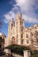 Natural History Museum, London, United Kingdom by Inger Hogstrom - various sizes