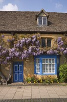 Wisteria Covered Cottage, Broadway, Cotswolds, England Fine Art Print
